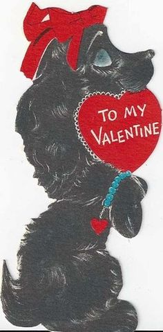 Pampered Poodle Dog Wants To Be Your Valentine