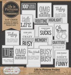 Life in Pictures: Prompt Card Templates v.01