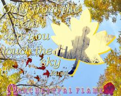 Archetypal Flame - Rumi - Autum - en #καλό #μήνα #φθινόπωρο #αγάπη#φως #καρδιά #Ρούμι #ουρανό #Αρχέτυπη #Φλόγα #Archetypal #Flame  #gif   #GIFS   #quotes  #Runi #heart  #Rumi #sky #autumn #month