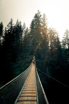 looks like capilano suspension bridge in north vancouver, canada ♥