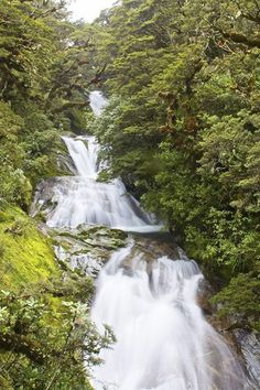 Dudleigh Falls.  Part of the Milford Track, New Zealand's most famous hike. This hike is considered to be among the best in the world.      The trail offers the fullest array of awe-inspiring New Zealand terrain including varied rainforests, alpine Mackinnon Pass, and a truly grand finale: a finish at the foot of Milford Sound.     | Flickr Credit: Tewahipounamu