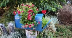 Gardening Fun – Recycle a mailbox! You might have heard of a mailbox planter, but have you seen a mailbox that is a planter?  When I saw Myra Glandon's mailbox transformed into a planter, I f…