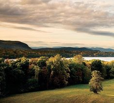 the major American landscape designers Alexander Jackson Downing, Frederick Law Olmsted, Beatrix Farrand, and Fletcher Steele all had a part in shaping the landscapes of the Hudson Valley.