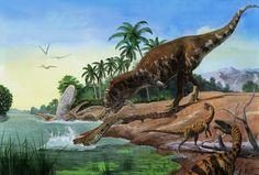 Majungasaurus crenatissimus, Mahajangasuchus insignis, Masikasaurus knopfleri