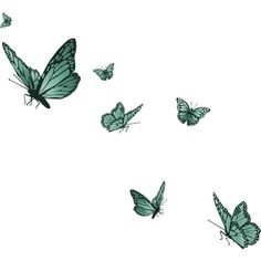 Butterflies ❤ liked on Polyvore