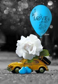 🌼🌺💐🌻🧡 Splash of Colour 🧡🌻💐🌺🌼 Miniature Photography, Cute Photography, Vintage Photography, Love Images, Love Pictures, Beautiful Pictures, Vespa Rosa, Love Wallpaper, Iphone Wallpaper