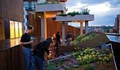 Rooftop garden at MCA Denver.  Amazing views of Denver from the rooftop bar!