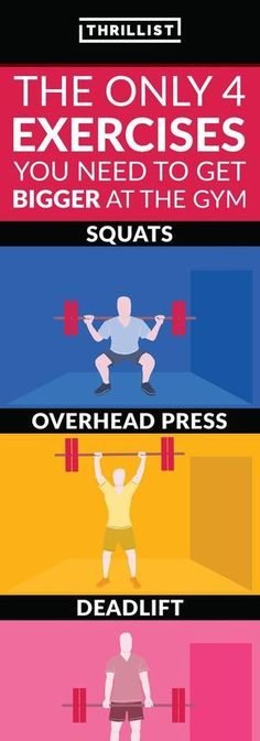 The Only 4 Exercises You Need to Get Bigger at the Gym