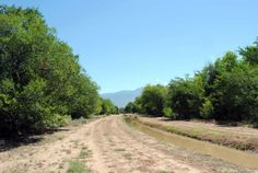 Walking trail Corrales New Mexico, Beautiful Places To Live, Horse Property, Horse Riding, Equestrian, Trail, Walking, Country Roads, Horses