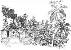 Image result for site: atlas-paysages.pnr-martinique.com folléa Images, Tapestry, Abstract, Wall, Artwork, Outdoor, Decor, Gardens, Scenery