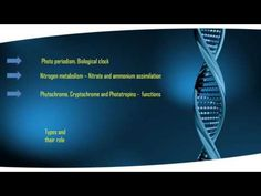 Csir most important topic For Plant Physiology