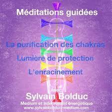 Afbeeldingsresultaat voor pranic healing chakras