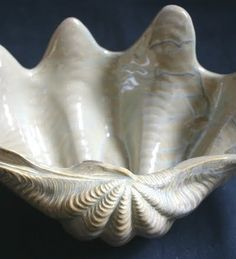 Porcelain Clam Shell Bowls from Ocean Offerings for $72