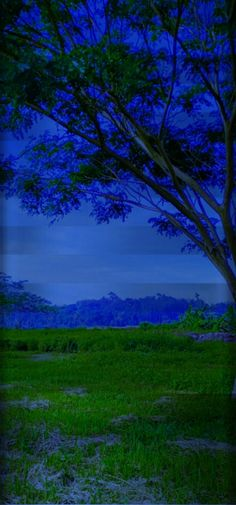 Nature Cases, Mountains, Nature, Travel, Naturaleza, Viajes, Destinations, Traveling, Trips
