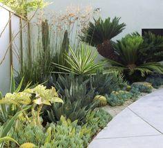 Garden design, post design 4031609394 for one superb garden. Garden Design Plans, Backyard Garden Design, Small Backyard Landscaping, Small Garden Design, Florida Landscaping, Small City Garden, Small Gardens, Succulent Landscaping, Landscaping Plants