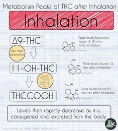 THC - metabolism and inhalation #thc #cannabinoid #cannabis #marijuana #metabolism #chemistry #ganja