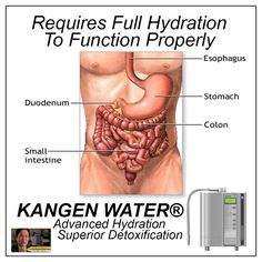 Colon cancer is the leading cause of death among all cancers. The gold standard to screen for colorectal cancer is a colonoscopy. Colon Health, Gut Health, Health Tips, Health And Wellness, Health Care, Health And Beauty, Natural Cures, Natural Health, Diet