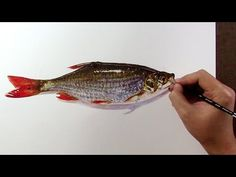 Painting a fish - Realistic Watercolor - YouTube