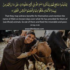 #Quran #QforQuran #QuranRecitation #AyatOfTheDay #HadithOfTheDay #HadeesOfTheDay #Sunnah #SunnahOfTheDay #Ayaah #Ayat #Hadith #Hadees #Islam #Muslims #Muslim #ReadQuran