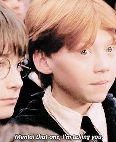 """mental that one. I'm telling you"" Ron Weasley HP (33) Tumblr"