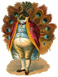 Haha It's Mr. Peacock! xD