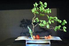 Ikebana by Linda van der Salm, Ohara School | Flickr : partage de photos !