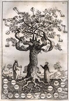 The tree of knowledge, Ramon Llull