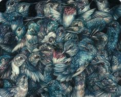Detailed Colored Pencil Drawings of Flora and Fauna by Marco Mazzoni  http://www.thisiscolossal.com/2015/03/detailed-color-pencil-drawings-of-flora-and-fauna-by-marco-mazzoni/