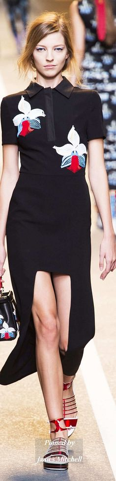 There is so much that I love about this line this season...(B. A. Snob)  FENDI Collection Spring 2015 Ready-to-Wear