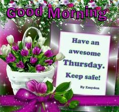 Good Morning Have An Awesome Thursday  good morning thursday thursday quotes good morning quotes happy thursday thursday quote good morning thursday happy thursday quote spring thursday quotes