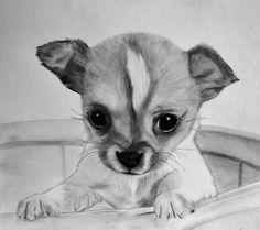 nl ce_photo html image. Disney Drawings Sketches, Cool Art Drawings, Beautiful Drawings, Drawing Sketches, Dog Nail Art, Dog Art, Realistic Animal Drawings, Charcoal Art, Animal Coloring Pages