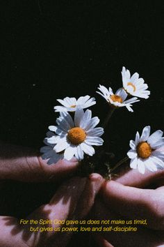 @incomparabl3blog  #aesthetic #god #jesus #jesussaves #jesuslovesyou #dios Daisy Wallpaper, Sunflower Wallpaper, Hand Photography, Close Up Photography, Light Photography, Aesthetic Pastel Wallpaper, Aesthetic Wallpapers, Flower Close Up, Beautiful Flowers Wallpapers