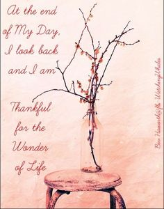 Thankful quote via www.Facebook.com/WatchingWhales