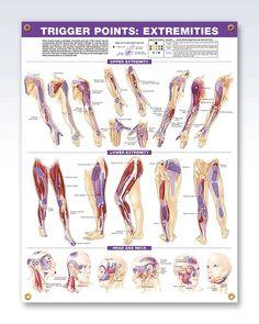 fórum de câncer cervical de dor nas pernas