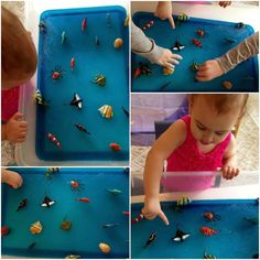 Natural Beach Living: Under the Sea Jello Sensory Adventure Edible Sensory Play, Sensory Play Recipes, Toddler Sensory Bins, Sensory Tubs, Toddler Fun, Kids Fun, Sensory Bottles, Toddler Crafts, Kids Crafts