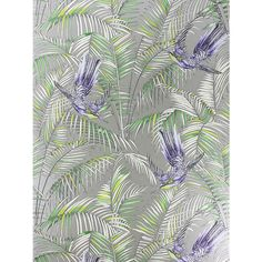 Buy Matthew Williamson Sunbird Wallpaper, Metallic Pebble / Electric Blue, W6543-01