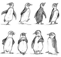 Drawn Penguin little penguin 11 - 1500 X 1403 Penguin Sketch, Penguin Illustration, Penguin Art, Pinguin Drawing, Pinguin Tattoo, Bird Drawings, Animal Drawings, Drawing Animals, Animal Sketches