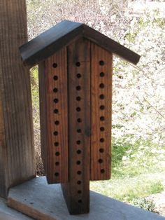 Solitary bee house. No honey, but might be a way to get more of them around the garden, and easy to make.