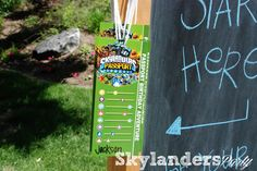 Skylander Birthday Party... She used my sheep blast game!!  So fun :)