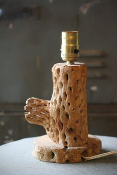 Cholla Cactus Lamp Base