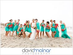 david molnar photography BLOG | The BLOG | International Destination Wedding photographers: May 2011