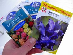 Winter-Sowing 101 | A Garden for the House