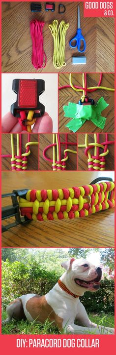 How to braid a paracord survival collar for your dog!