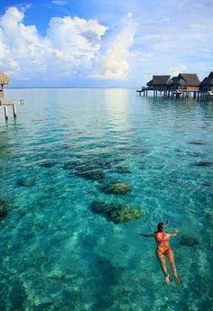 snorkeling in Tahiti. #KSadventure #KendraScott