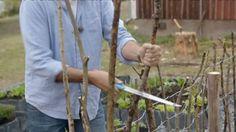 Ernst Kirchsteiger gör staket till kryddträdgården