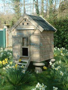 Unique Chicken Proof Garden