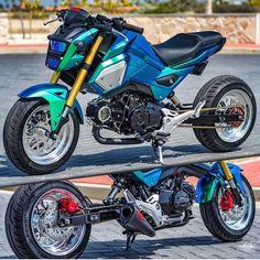 Honda Bikes, Triumph Motorcycles, Custom Motorcycles, Honda Scooters, Honda Grom Mods, Honda Grom Custom, Pocket Bike, Dirt Bike Girl, Girl Motorcycle