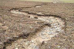 ZH: 36% der Böden erosionsgefährdet
