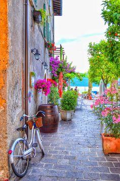 Gargnano, Italy June 2014 by Daniel Bär on 500px