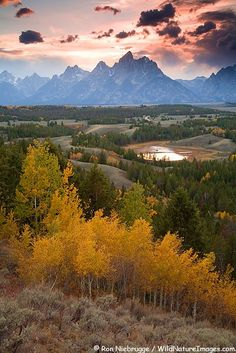 Grand Teton Park USA